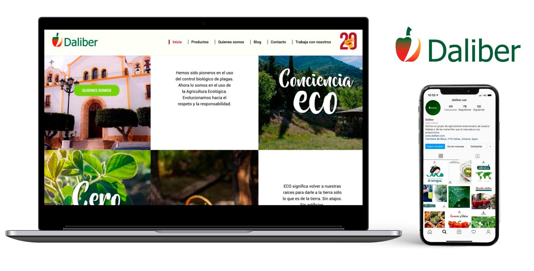 diseño web daliber por plataforma publicidad