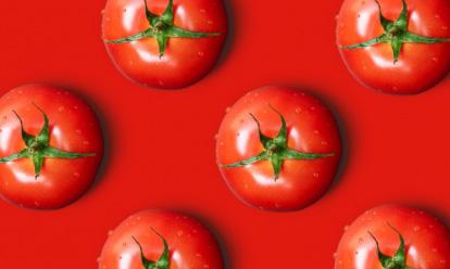 background tomates